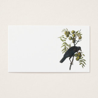 American Crow by Audubon Business Card