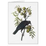 American Crow by Audubon Greeting Card