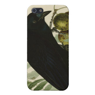 American Crow Case For iPhone SE/5/5s
