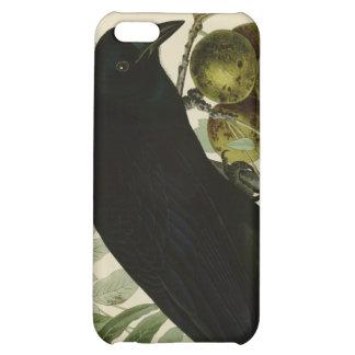 American Crow iPhone 5C Cases