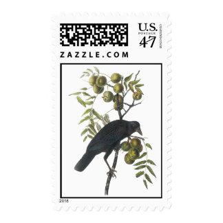 American Crow, John James Audubon Stamp