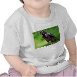 American Crow Tee Shirt