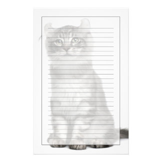 American Curl Kitten (3 months old) Stationery