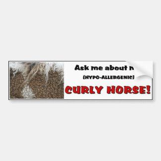 American Curly Horse Bumper Sticker Car Bumper Sticker