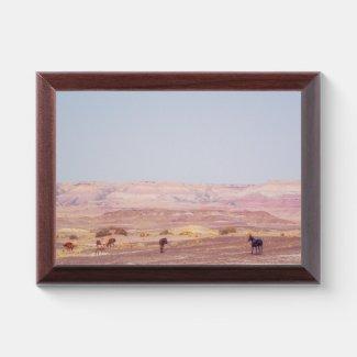 American Desert Horses P8670 Award Plaque