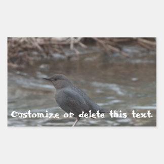 American Dipper; Customizable Rectangular Sticker