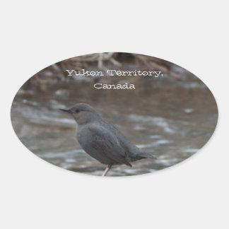American Dipper; Yukon Territory Souvenir Oval Sticker