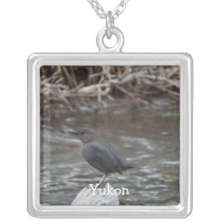 American Dipper; Yukon Territory Souvenir Square Pendant Necklace