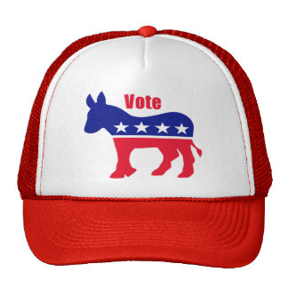 American donkey with Vote Hat