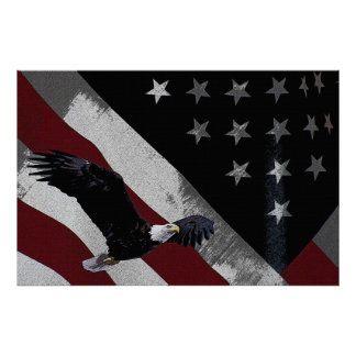 American Eagle 36 x 24 Poster