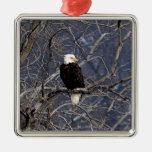 American Eagle Adornos