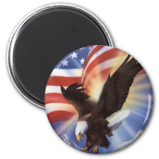 american-eagle-and-flag-ii magnet