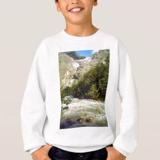 American eagle and Liberty Bell Sweatshirt