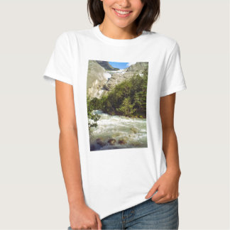 American eagle and Liberty Bell T Shirt