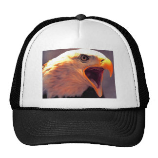 American Eagle - Bald Eagle Mesh Hats