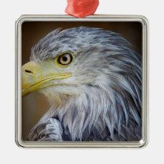American Eagle Bird Metal Ornament at Zazzle