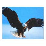 American Eagle calvo Anuncios Personalizados