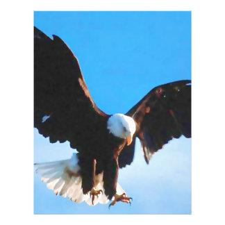 "American Eagle calvo Folleto 8.5"" X 11"""