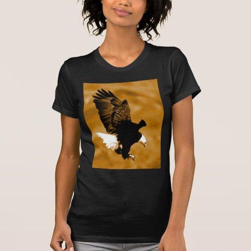 American Eagle calvo Polera
