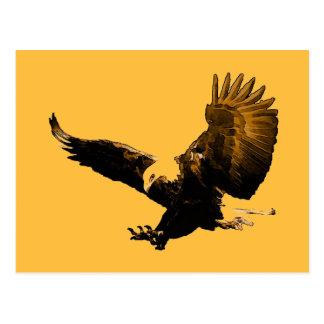 American Eagle calvo que aterriza la postal