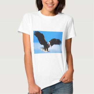 American Eagle calvo Remeras