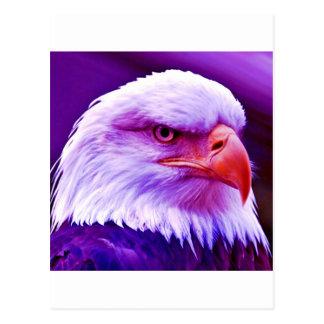 American Eagle calvo Tarjetas Postales