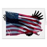 American Eagle Felicitaciones