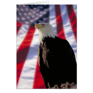 American Eagle & Flag Notecard