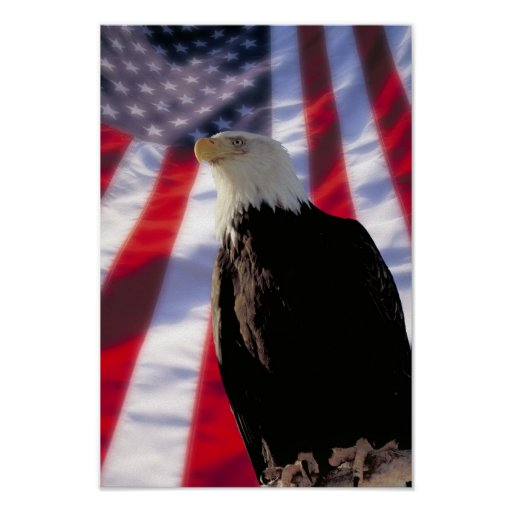 American Eagle & Flag Poster
