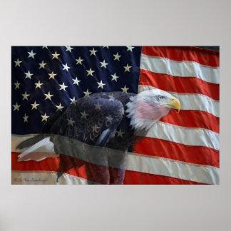American Eagle Flag Print