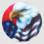 American Eagle Full Sticker