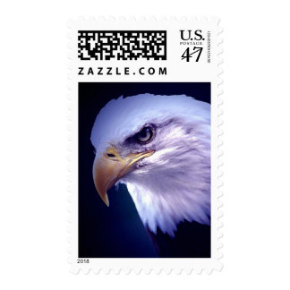 American Eagle in Blue Night Stamps