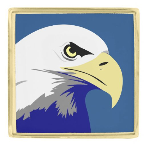 pin 1440x900 american eagle - photo #36