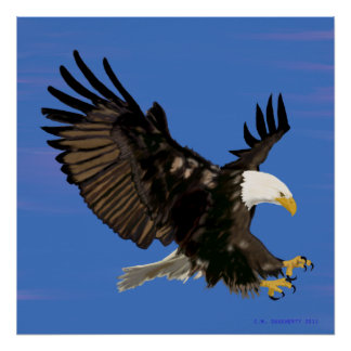 American Eagle On Blue Poster