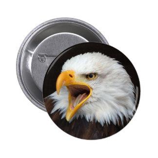 AMERICAN EAGLE - Photography Jean Louis Glineur Pinback Button