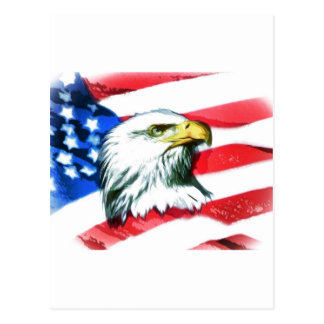 American Eagle Post Card