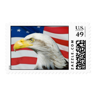American Eagle Postage Stamp
