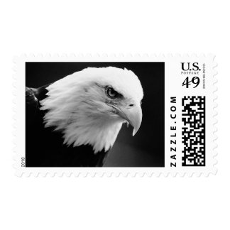 American Eagle Postage Stamps