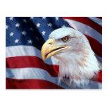 American Eagle Postales