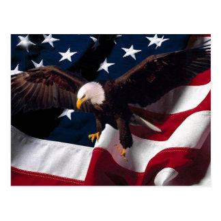 American Eagle Postcard 1