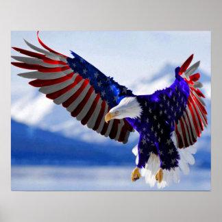 American Eagle Póster