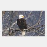 American Eagle Rectangular Pegatina