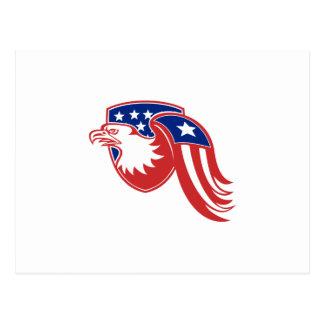 American Eagle Stars and Stripes Flag Shield Retro Postcard