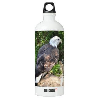 - American Eagle Water Bottle
