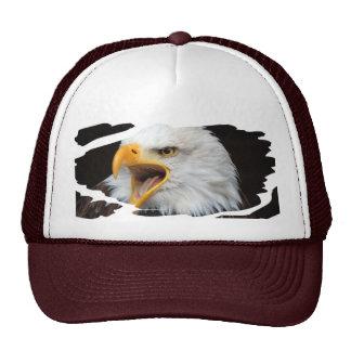 AMERICAN EAGLE - WEIS HEAD SEA-EAGLE - BY GLINEUR TRUCKER HAT