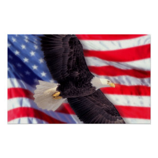 American Eagle with American Flag Poster