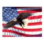 American Eagle y postal de la bandera