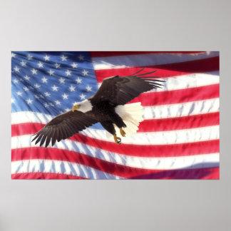 American Eagle y poster de la bandera