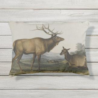 American Elk by John James Audubon Outdoor Pillow