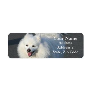 American Eskimo Address Labels